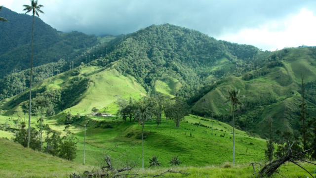 Kolumbijská příroda
